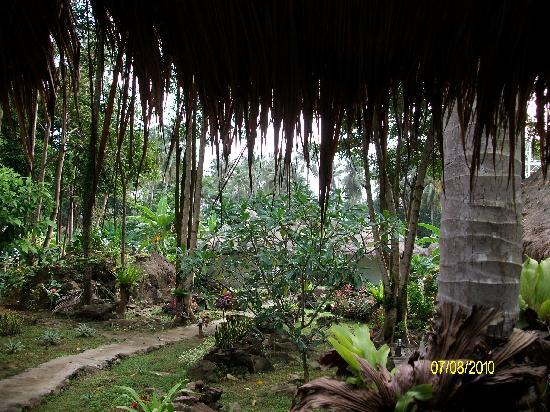 Kachapura: une vue du jardin