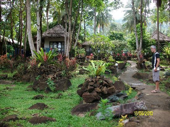 Kachapura: autre vue du jardin