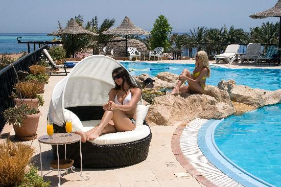 Jewels Sahara Boutique Resort: The Pool
