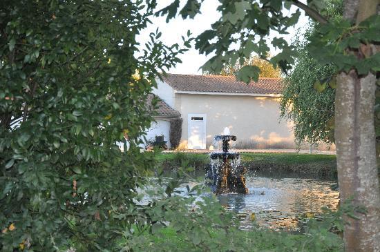 Hotel Chateau Beau Jardin: Pond