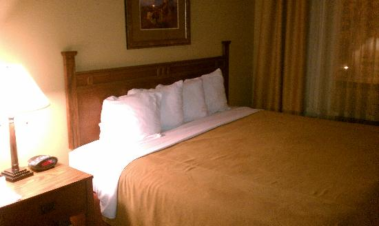Best Western Plus Country Inn & Suites: Very comfortable bed, very clean bedding!