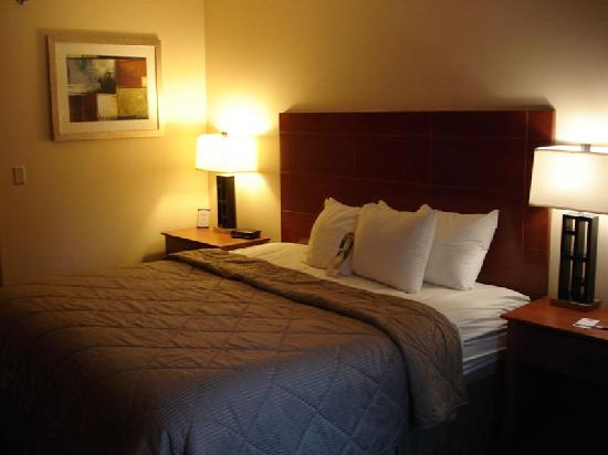 Comfort Inn Civic Center: King size bed