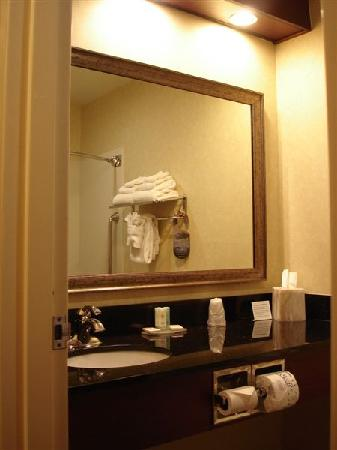 Comfort Inn Civic Center: Bathroom