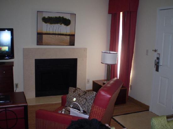 Residence Inn Atlanta Perimeter Center East: fire place