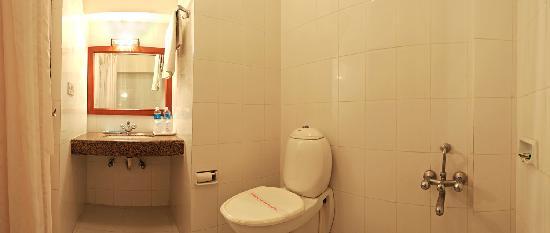 Hotel Atithi, Agra: BATH ROOM