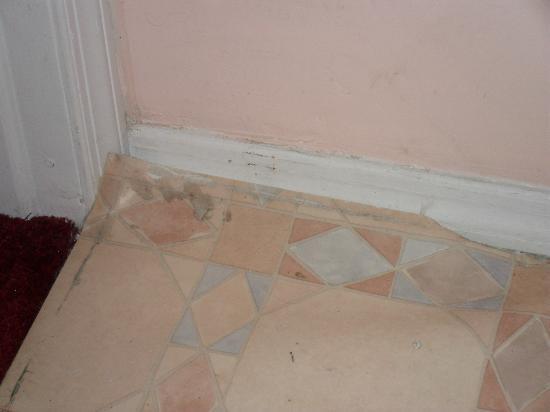 Eve's Place: Bedroom floor
