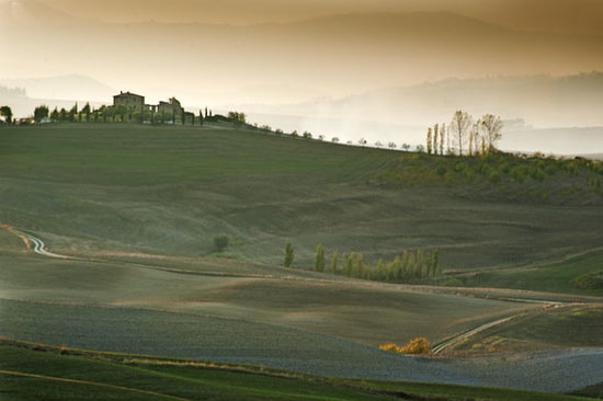 Agriturismo Cretaiole di Luciano Moricciani: Tuscon landscaape  1