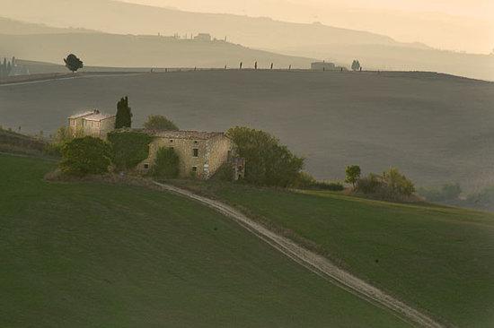 Agriturismo Cretaiole di Luciano Moricciani: Tuscon landscpae 2