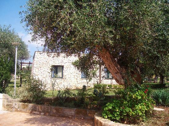 Dolmen Sport Resort: un bugalons au milieu des oliviers,,beufff