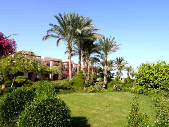 Iberotel Makadi Beach: Blick auf die Häuser mit den Gästezimmern
