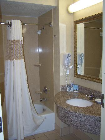 Hampton Inn & Suites Palm Desert: Bathroom