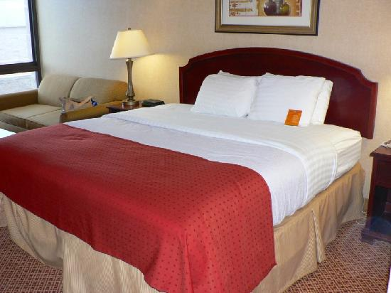 Radisson Hotel Cheyenne: King bed