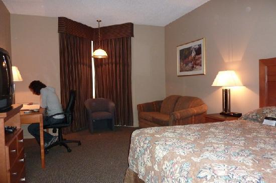 Executive Royal Hotel Edmonton: Dark room