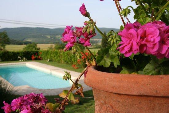 Gigliola House (Villa Gigliola- Giglio)