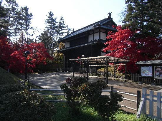 Hirosaki Castle: 弘前城の紅葉