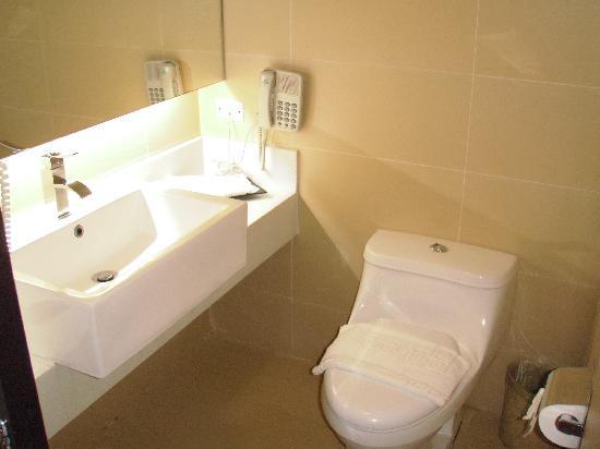 Summit Ridge Tagaytay: Toilet and sink