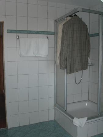 Landhotel Hirsch: Teilansicht Bad/Dusche