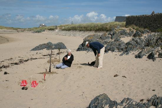 Driftwood: A perfect,children friendly, beach