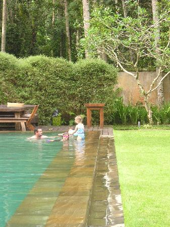 Puri Tupai : pool shelf for little ones