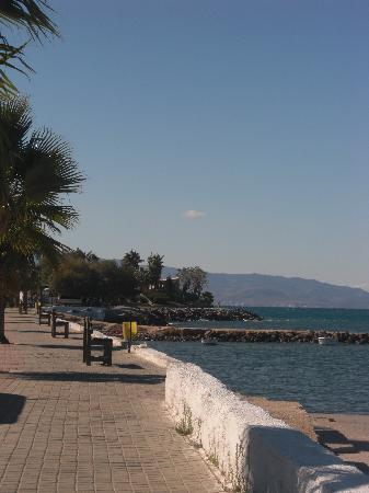 Palmiye Apart: Turgutreis Promenade