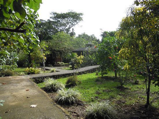 Bungalows Ache: Garten der Bungalowanlage