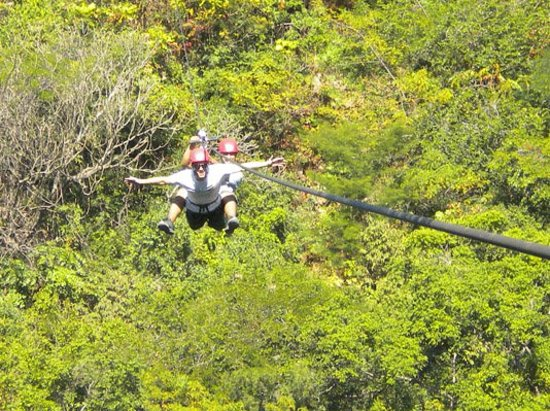 GO GAY! Jungle Adventure: Zip line Superman