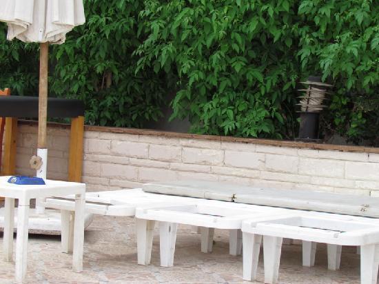 Cleopatra Tsokkos Richy Hotel: The pool area