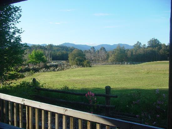 Caledonian Creek Lodge: The view from our room