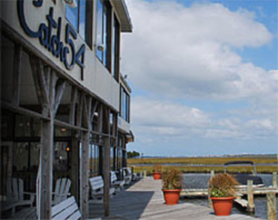 Pet Friendly Hotels Near Fenwick Island Delaware