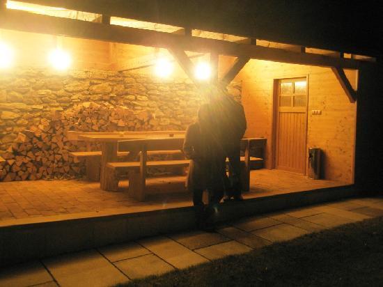 The Chornitzer House: Back garden