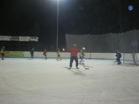 The Chornitzer House: Ice Hockey