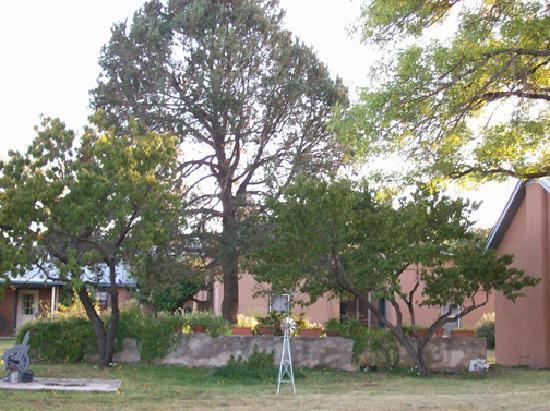 VERANDA HISTORIC INN: Veranda backyard