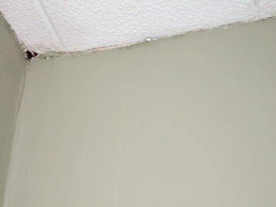 St. James Apartments: Ceiling with hole, started leaking!