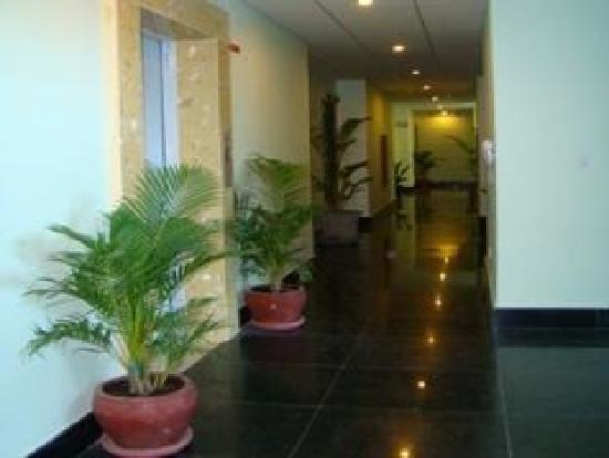 Parklane Hotel: Hallway