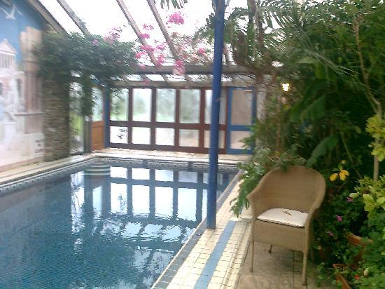 Fingals Boutique B&B: Beautiful Pool area