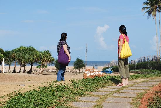 Beach Distance From The Resort Picture Of Royal Orchid Beach