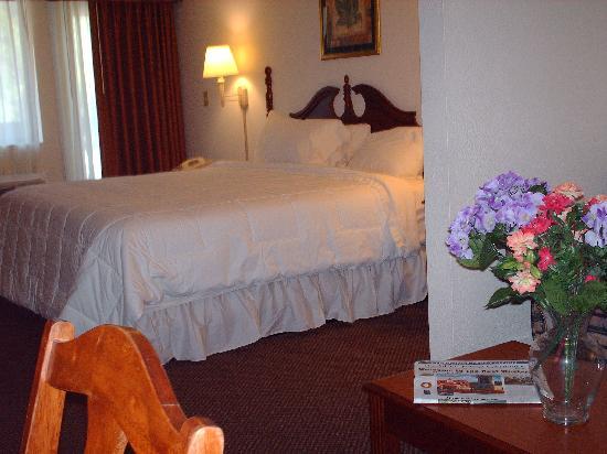 BEST WESTERN PLUS Riverpark Inn & Conference Center Alpine Helen: King / Fireplace room