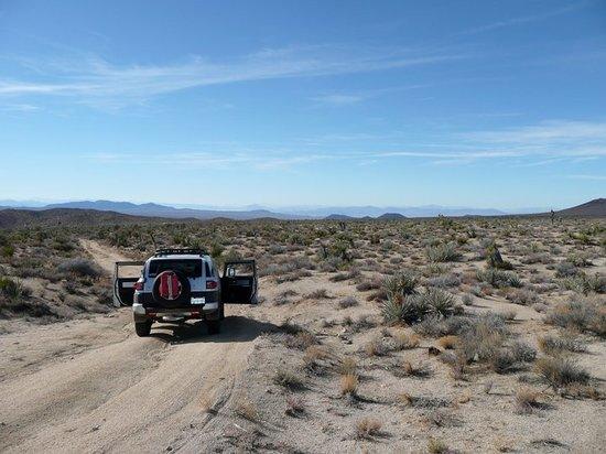 Zdjęcie Mojave
