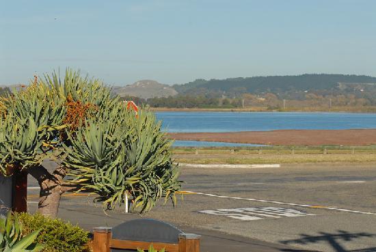 At the Rocks Motor Lodge: Estuary view