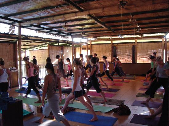 Serenity Eco Guesthouse and Yoga: yoga group in Villa Serenity during the 2010 Course