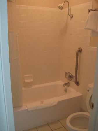 Quality Inn near Historic Downtown: Nice shower head