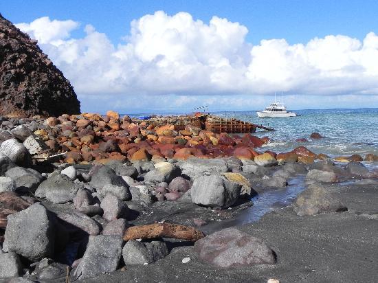 Whakatane, New Zealand: boat off island