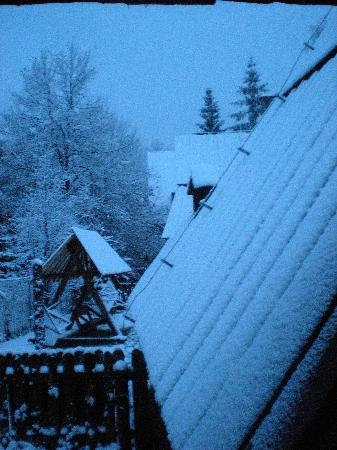 Bakowo Zohylina Gazdowka: The first snowfall