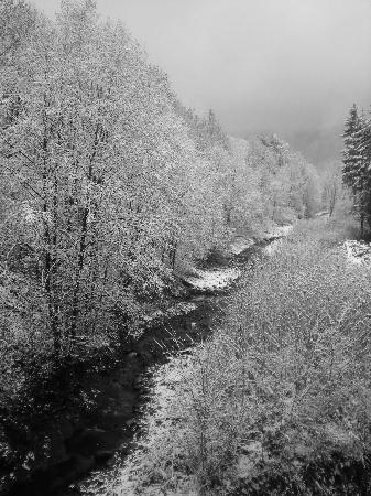 Bakowo Zohylina Gazdowka: The creek along the chalet