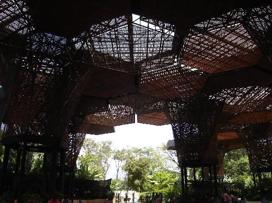 Jardin Botanico de Medellin: Jardín Botánico Medellín