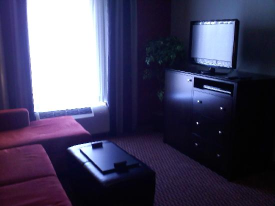 Homewood Suites by Hilton Leesburg: Living area in our room