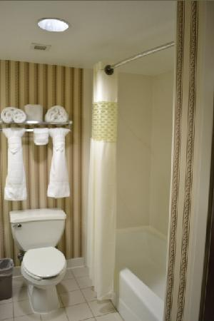 Hampton Inn Waco North: The clean bathroom