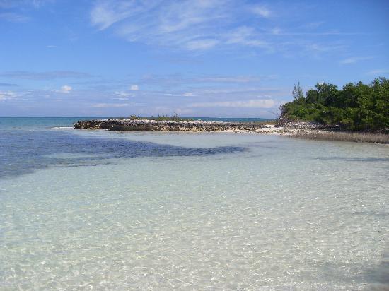 Kamalame Cay : Dive trip
