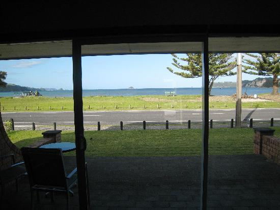 Oceanside Motel Whitianga: from the room