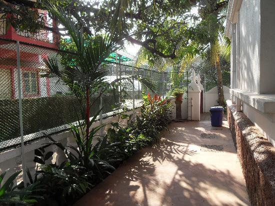 Casa Mia, Goa: Side gardens and walkway